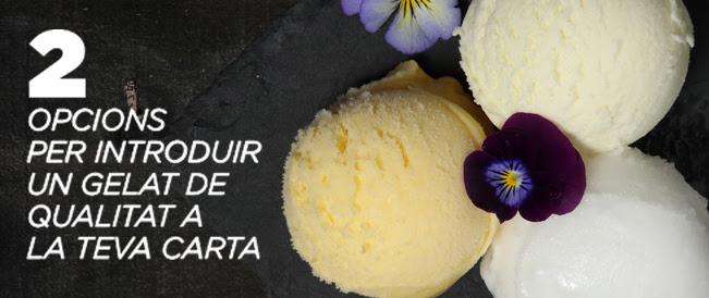 2 opcions per introduir un gelat de qualitat a la teva carta